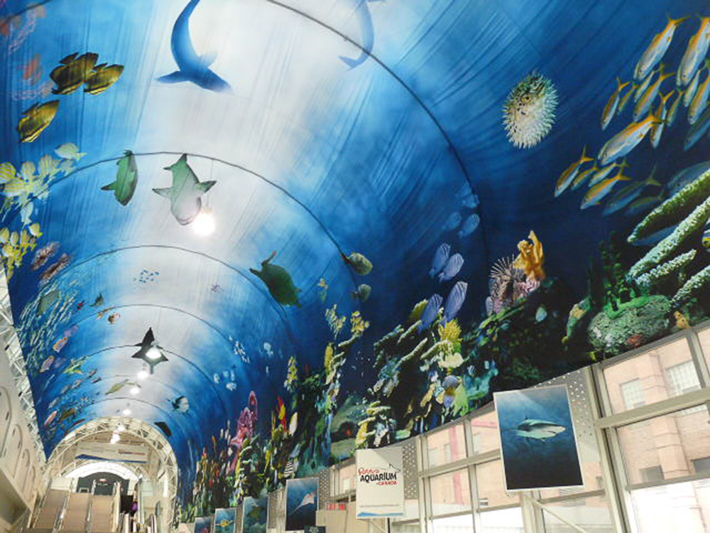 The Aquarium, digital print on transparent fabric, The Skywalk, Toronto